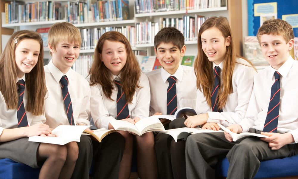 Cotham School use NetSupport